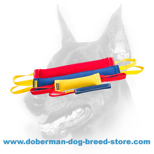 Doberman Dog training set of durable french linen