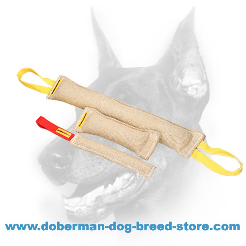 Doberman Dog training set of natural jute materil