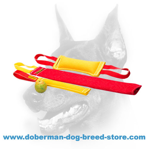 Doberman puppy training set of reliable French Linen material