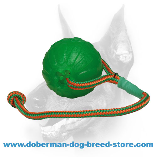 Doberman dog super durable ball for training
