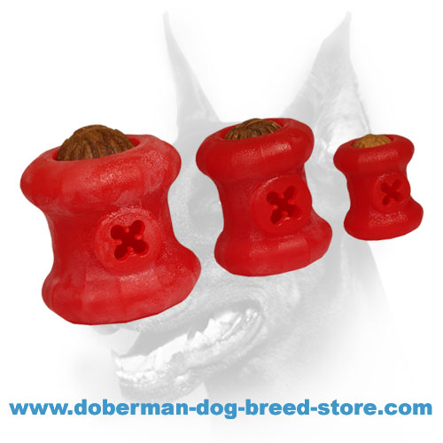 Safe foam chewing toys for training and playing with Doberman