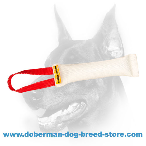 Doberman dog training tug made of extra reliable fire hose material