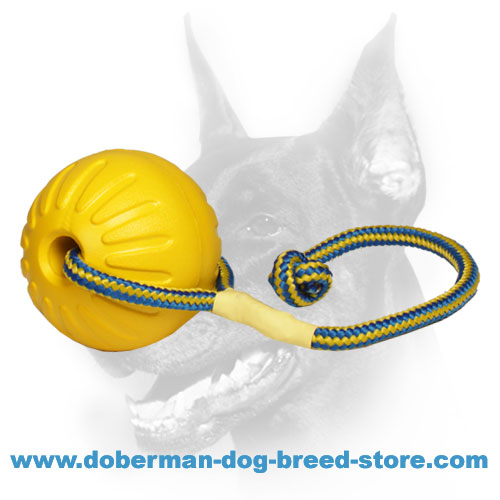 Doberman super durable ball gentle on teeth and gums