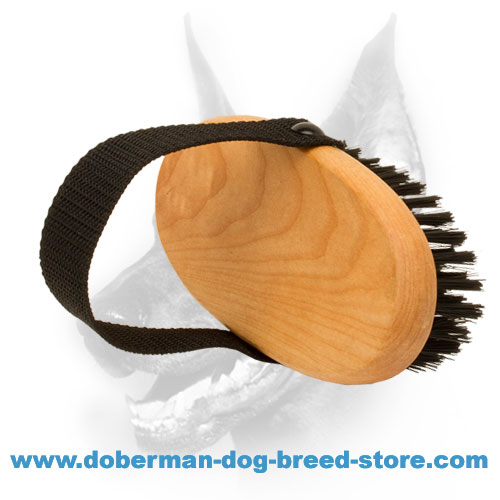 Durable bristle brush for Dobermans