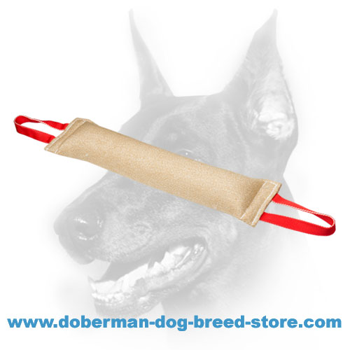 Doberman Dog training tug with hypoallergenic stuffing