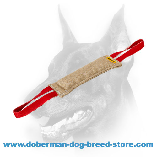 Doberman Dog two-handles training tug for Schutzhund training