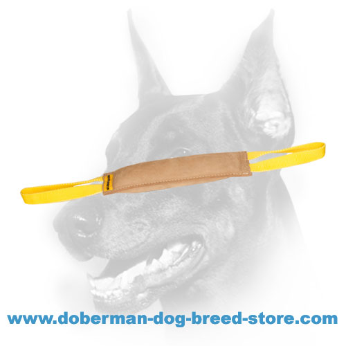 Doberman Dog training tug for building dog's drive and focus