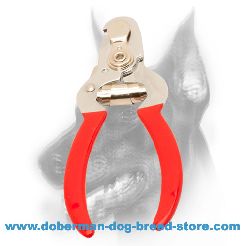 Doberman dog nail clipper for easy grooming