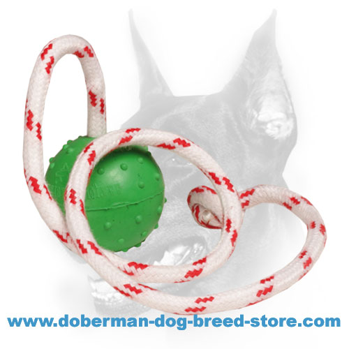 Doberman Dog durable rubber ball with nylon rope