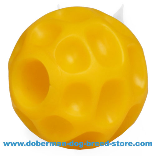 Doberman puppy super durable ball for dog training