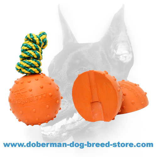 Doberman dog rubber ball with strong nylon rope