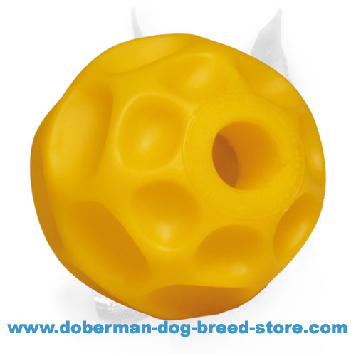 Doberman dog super durable ball for interactive games