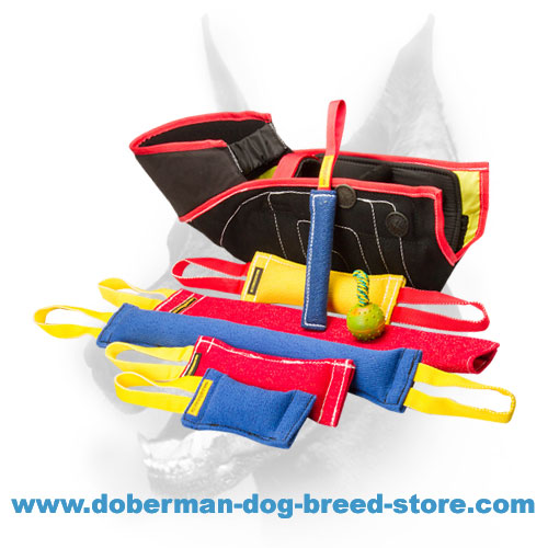 Doberman Dog training set - 8 items