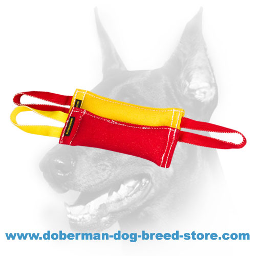 Doberman puppy training set of reliable synthetic material