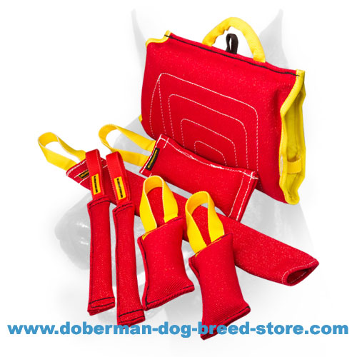 Doberman Dog training set made of reliable synthetic material