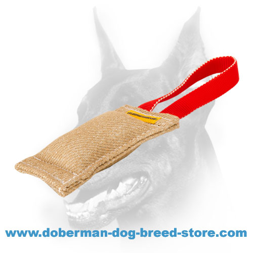 Doberman puppy jute tug for biting skills developing