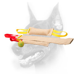 Doberman Puppy Training Set With Great Training Toy