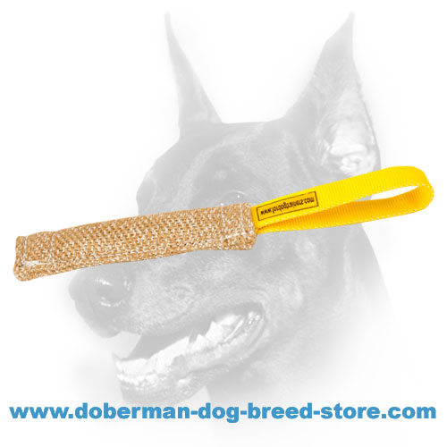 Doberman Dog training tug made of dog-friendly materials