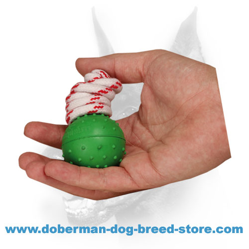 Doberman dog training ball made of natural rubber
