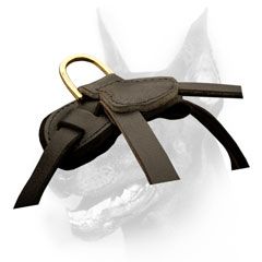 Doberman Harness with durable brass hardvare