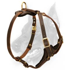 Multifunctional Leather Harness for your dog