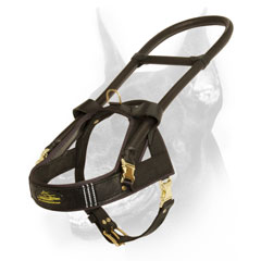 Leather Doberman Harness with Hard steel control handle