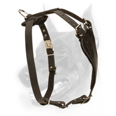 Handmade exclusive leather dog harness