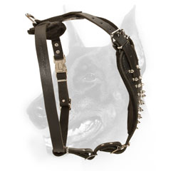 Reliable most beautiful leather dog harness