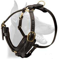 Custom leather beautiful leather odg harness