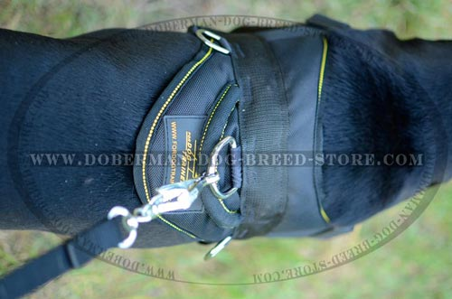 Top Quality Nylon Dog Harness