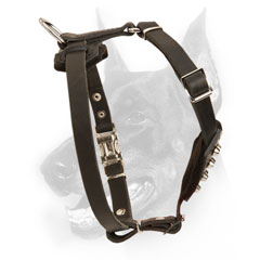 High-quality Doberman puppy Harness for controlling with pleasure