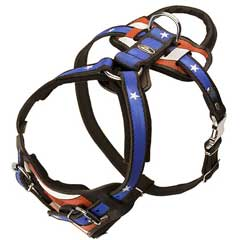 Multifunctional Leather Harness