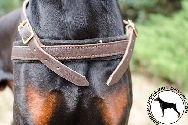 Three ways adjustable harness for Doberman