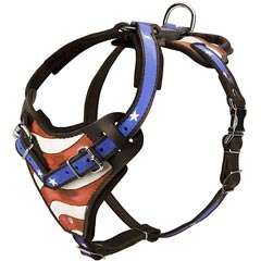 Hand Painted Leather Harness