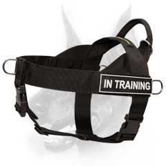 Comfortable well-made nylon training dog harness