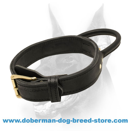 2 ply Leather Agitation Dog Collar With Heavy-Duty Handle for Dobermans
