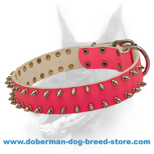"""Princess"" Doberman Dog Collar with Stylish Spikes"