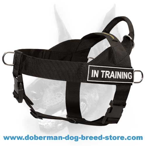 SAR Best Nylon Dog Harness-Wonderful Multipurpose Doberman Harness