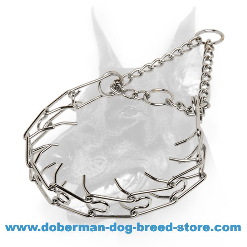 """Calm Down Effect"" Doberman Dog Chrome-Plated Pinch Collar"