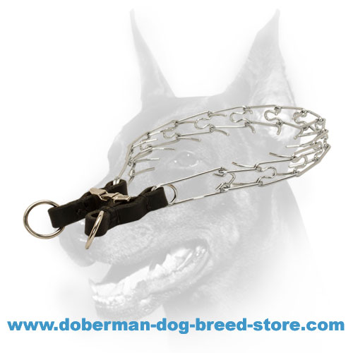 Doberman Dog Quality Pinch Collar for Behavior Correction