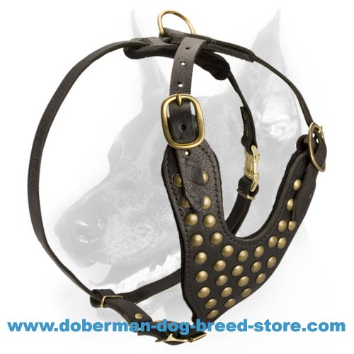 Studded Leather Dog Harness-Exclusive Friendly Doberman Harness