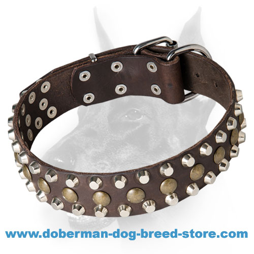 Fantastic Leather Doberman Dog Collar with Chic Decorations