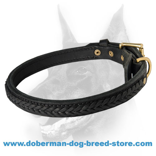 Designer Leather Doberman Collar with Amazing Braid