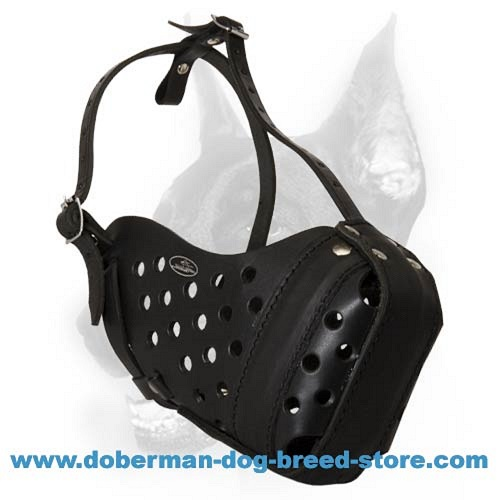 Doberman Dog Leather Muzzle with Reinforced Nose Part