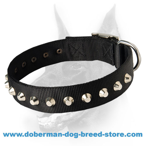 "Fashion Nylon Collar with 1 Row Studs -1 1/2"" for Doberman - Branded Product"
