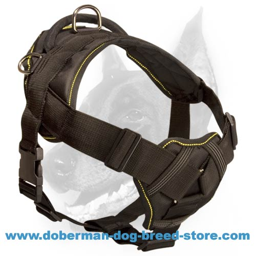 Versatile Nylon Doberman Breed Harness-Special Training Comfy Dog Wear