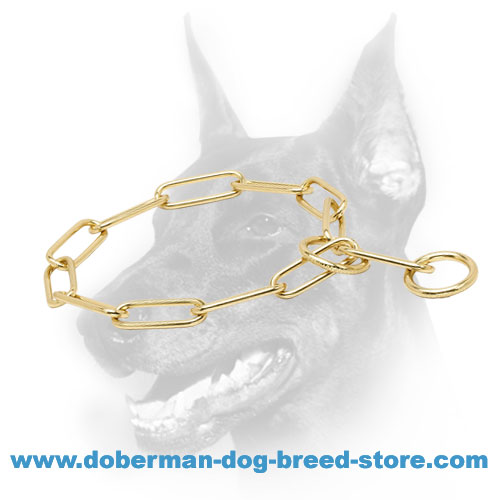 """Chain Trainer"" Doberman Dog Brass Fur Saver Collar"