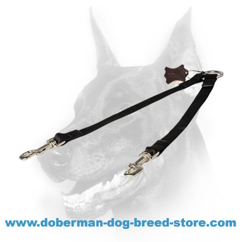 Doberman Nylon Coupler Lead for All-weather Walking Two Dogs