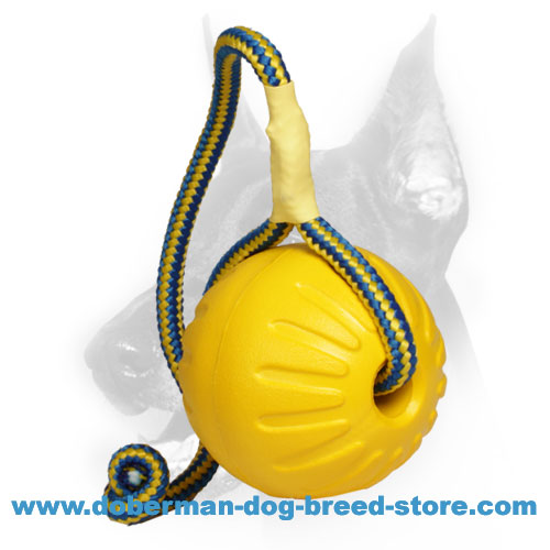 'High Fly' Doberman Dog Foam Ball on a Bright Rope