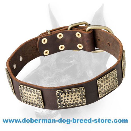 Luxury Leather Dog Collar for Doberman